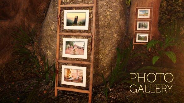 Galería de fotos en un bosque encantado
