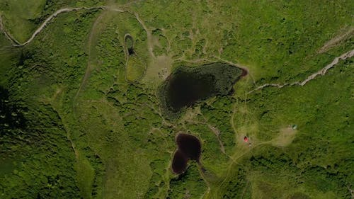 Aerial Drone Top View. Green Mountains Without Trees, Lake in the Mountains Svydovets Dragobrat