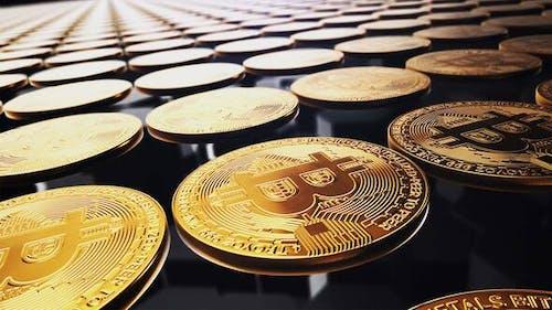 Bitcoin logo reveal