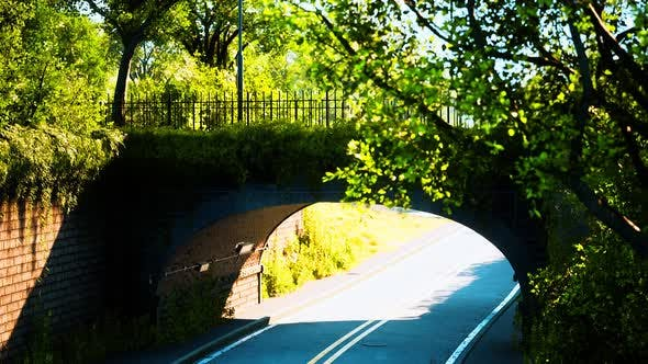 Thumbnail for Arch Bridge with Living Bush Branches in Park