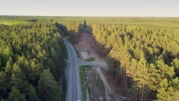 Bird Eye View Cut Down Area in Pine Forest Crossed By Road
