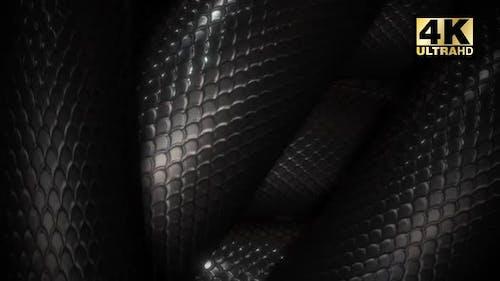 Snake Loop
