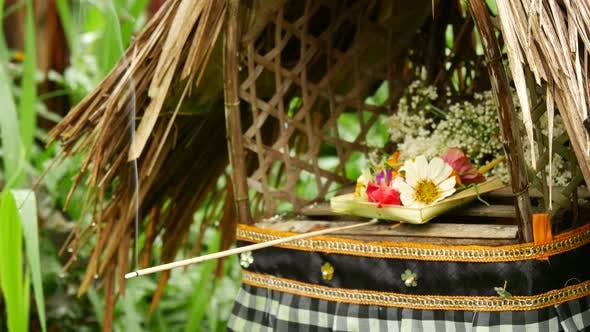 Cover Image for Close up from Incense and offer in a garden in Bali