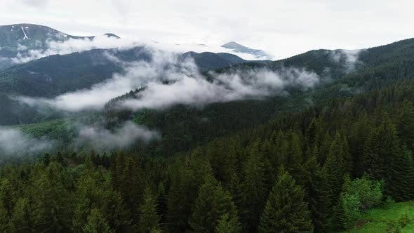 Thumbnail for Flying Through the Clouds Above Mountain Tops. High Peaks with Forest, Wonderful Natural Landscape