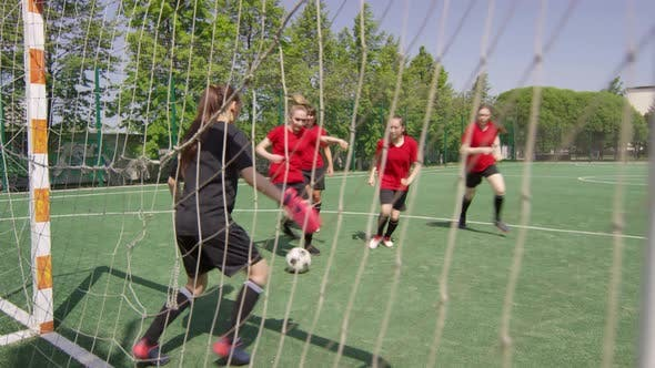 Thumbnail for Female Football Players Scoring Goal during Outdoor Match