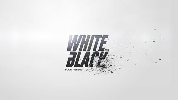 White And Black Logo Reveal