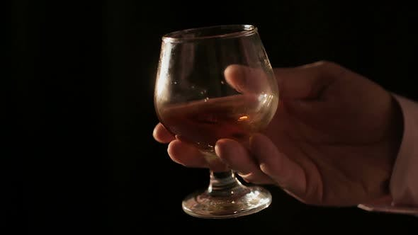 Thumbnail for Sommelier Holding Glass With Cognac and Shaking, Male Tasting Alcoholic Drink
