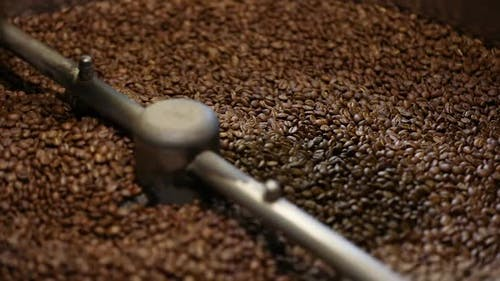 Coffee Production. Brown Beans Roasting In Machine Closeup