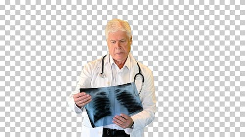 Doctor looking at x-ray and walking, Alpha Channel