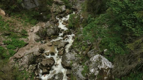 Cover Image for Forest Creek Flowing Into The Karst Cave