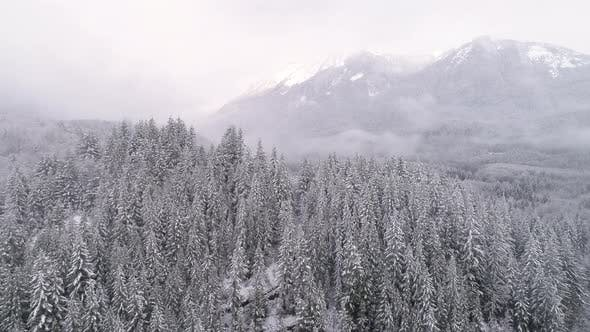 Thumbnail for Helicopter View Of Fog Haze On White Mountain Tops In Winter Snow Covered Forest