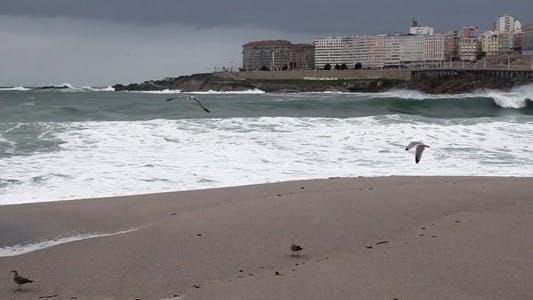 Thumbnail for Ocean Storm 15