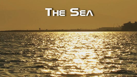 Cover Image for The Sea