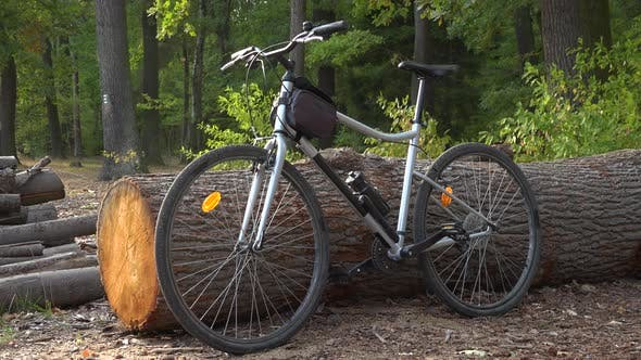 A Bicycle Is Propped Against a Log in a Countryside