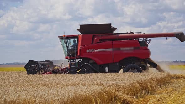 Thumbnail for Red Combine Harvester on the Golden Field