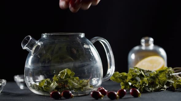 Thumbnail for Dropping Mint Leaves, Rosehip and Lemons Into a Teapot,