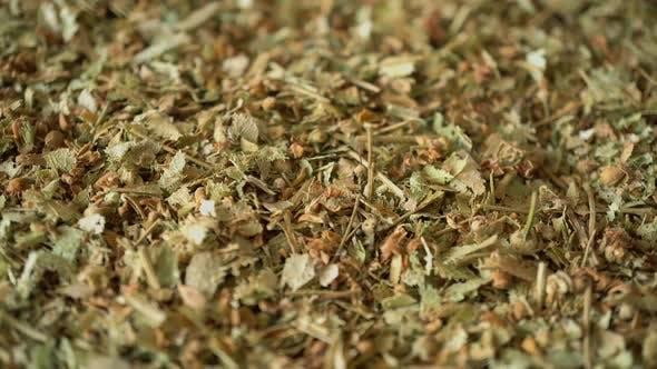 Thumbnail for Rotation Medicinal Herbs Linden 2