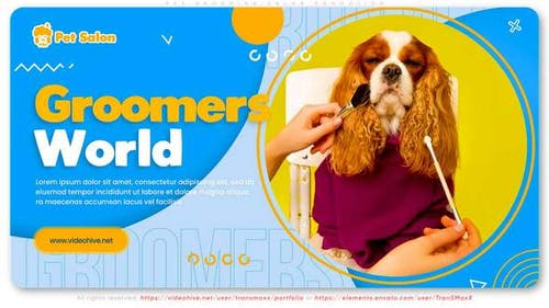 Pet Grooming Salon Promotion
