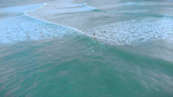 Aerial View From Above Athletic Young Women and Men Surf, Ride Big Waves with Bright Daylight