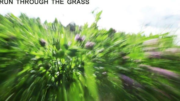 Thumbnail for Fast Run Through The Grass