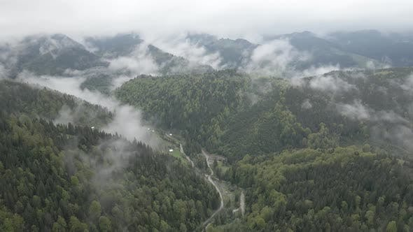 Thumbnail for Ukraine, Carpathian Mountains: Beautiful Mountain Forest Landscape. Aerial, Flat, Gray