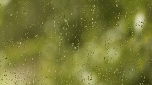Thumbnail for Rain Drops On The Window And Bokeh Background