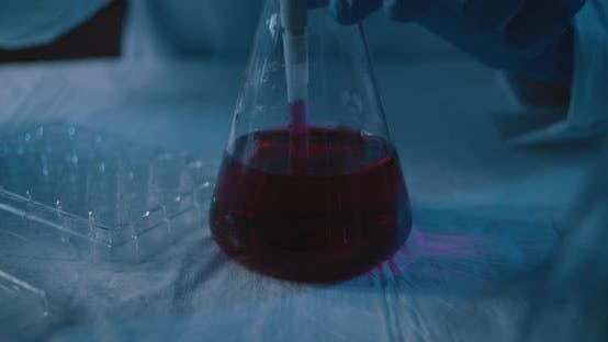 Thumbnail for Scientist taking out a red liquid from a conical flask and placing it into plate