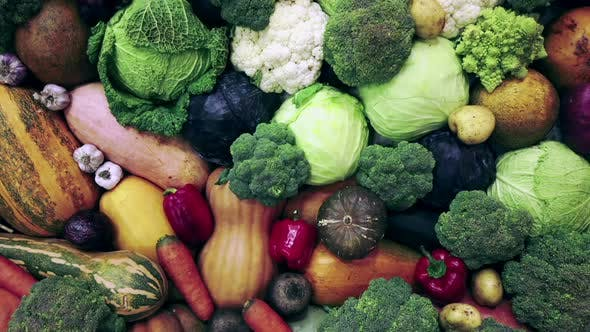 Thumbnail for Autumn Harvest of Different Vegetables and Root Crops. Background of Vegetables.