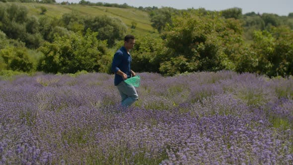 Thumbnail for Man Collecting Butterflies with Net in Feild