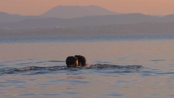 Thumbnail for Junge spielen mit Vater im Meer, Ozean