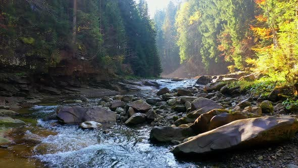 Thumbnail for Mountain River Flowing Between Rocky Shores in Carpathians Mountains, Ukraine
