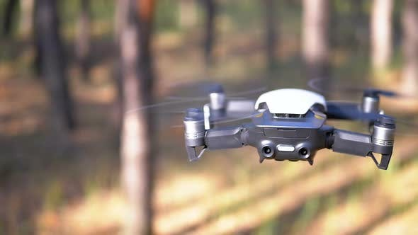 Drone with a Camera Hovers in the Air Above the Ground in the Forest. Slow Motion
