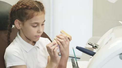 A Curious Girl Is Played with an Artificial Jaw in the Dentist's Office
