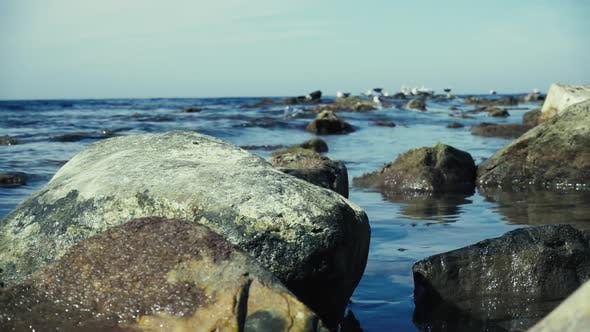 Thumbnail for Big Stone in the Water By the Sea