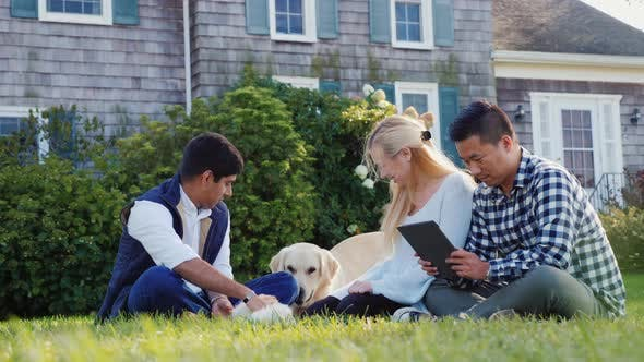 Cover Image for Young People Play with the Dog in the Yard, Use the Tablet