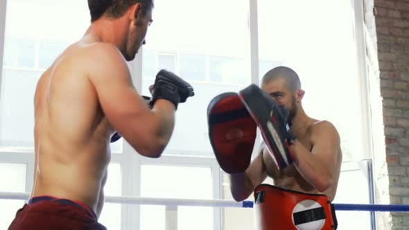Thumbnail for Rear View Shot of a Strong Muscular Mma Fighter Training with the Padman
