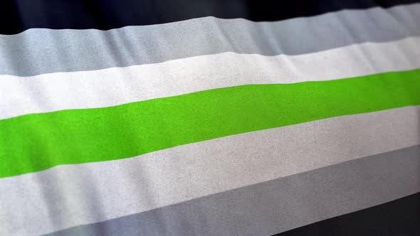 Thumbnail for Agender Gender Pride Flag Loop