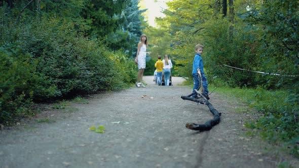 Kleiner Junge schleppt einen Ast entlang der Forststraße