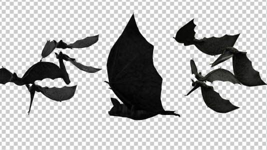 Gruselige Fledermäuse Übergänge