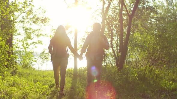Cover Image for Romantic Couple Holding Hands and Walking in Forest at Sunset