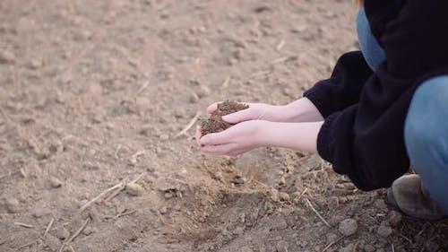 Agriculture, Soil, Farmer Examining Soil in Hands