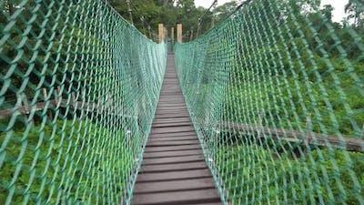 Walk on the canopy walk bridge