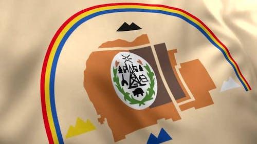 Navajo Nation Flag / Native American Flag