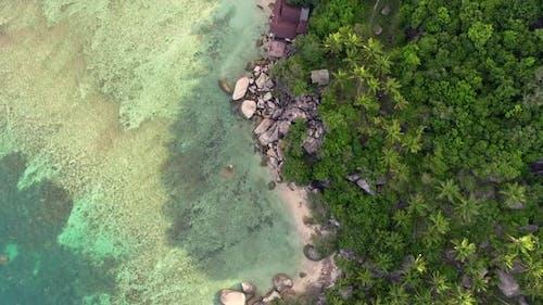 Tropical Beach on Koh Tao