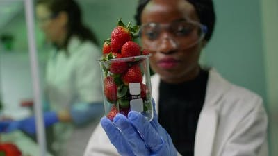 African Researcher Looking at Glass with Healthy Strawberry