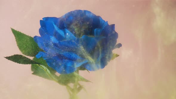 Golden Magical Dust Floating Around Bright Blue Rose Underwater
