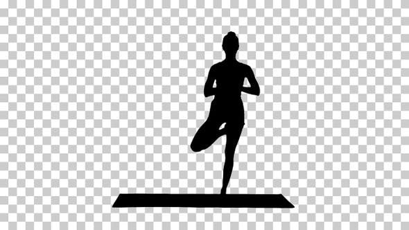 Thumbnail for Silhouette Beautiful smiling happy young woman doing yoga