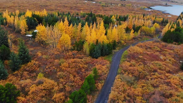 Aerial View of Colorful Autumn Landscape in National Park Thingvellir, Iceland