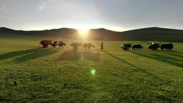 Central Asian Family People Walking Immigrating With Traditional Old Oxcart Tumbrel And Tumbril Cart