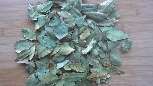 Cover Image for Lots of Laurel Leaves Used for Cooking